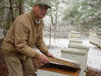 Bee-Keeping08-sm.jpg